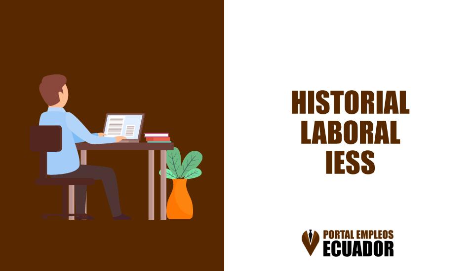 Consultar Historial Laboral IESS por Internet